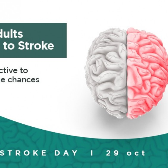 World Stroke Day: Managing Post Stroke Rehab by physiotherapy